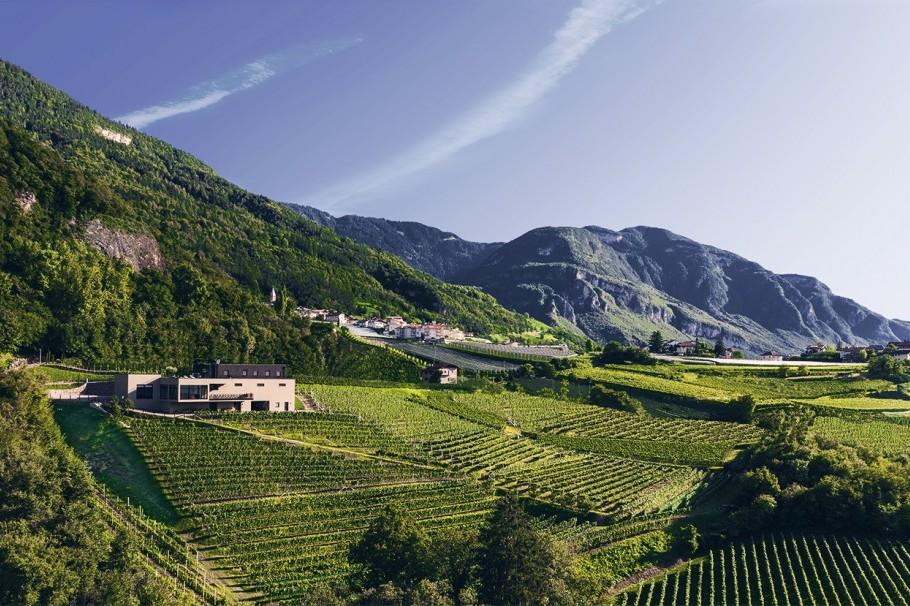 Weingut Pfitscher Montan Südtirol