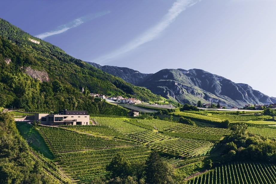 Tenuta Pfitscher Montagna Alto Adige