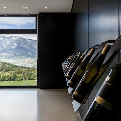 Wine bottles exhibition