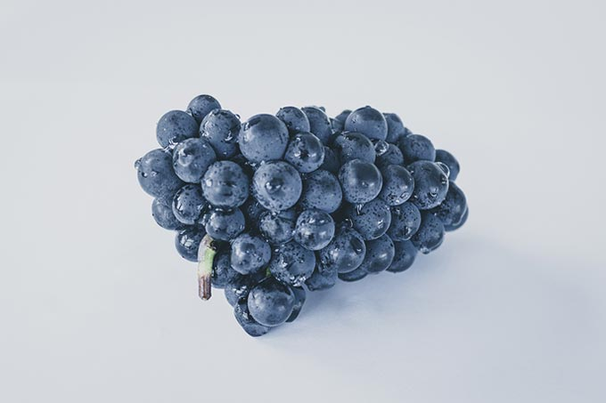 Bunch of grapes gray